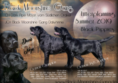 Kennel Black Moonshine Gang