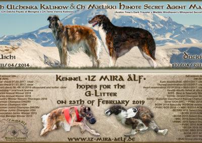 www.iz-mira-aelf.de
