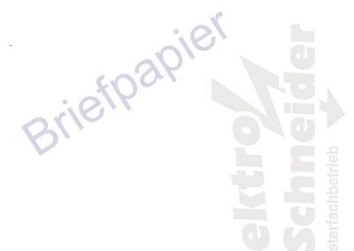 Elektro-Schneider003